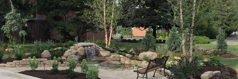 Exceptional landscaping and tree 
